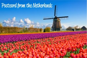 Postcard from Netherlands