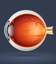 Is a dose-dependent response common among a number of myopia control treatments?